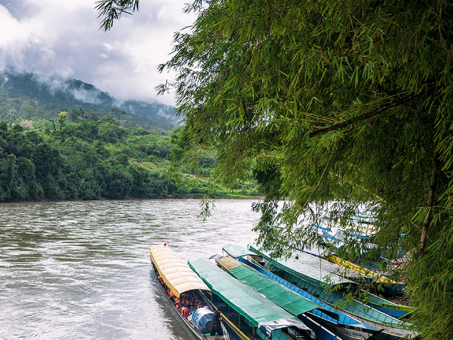 Barche nella foresta pluviale su un fiume