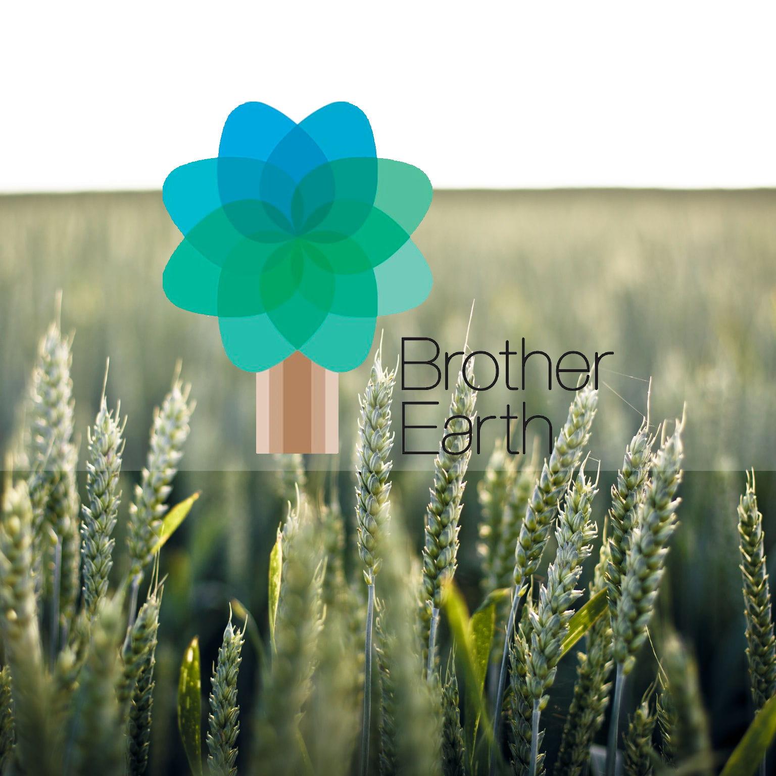 Campo di grando con logo programma ambientale Brother Earth