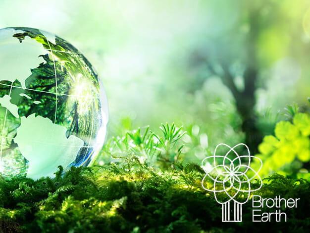 Mappamondo di vetro in un bosco verde. Concetto di sostenibilità.