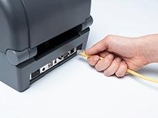 Cavo Ethernet giallo inserito manualmente nella stampante TD-4T