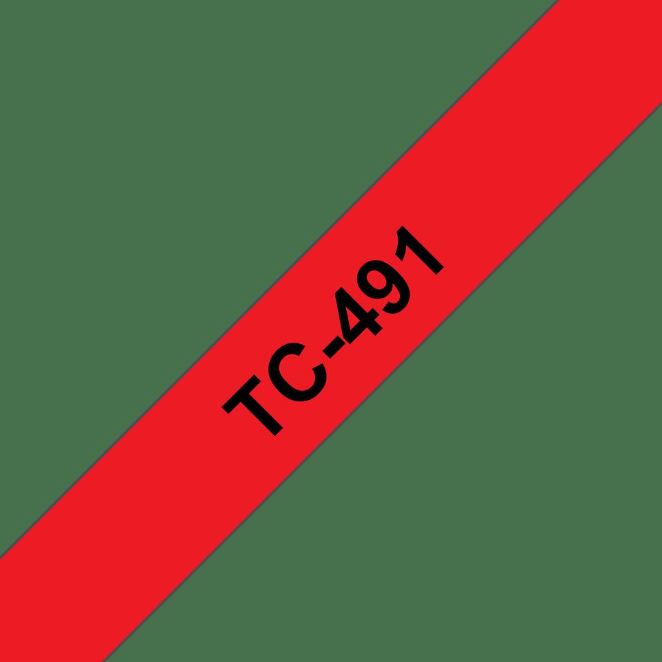 TC491_main